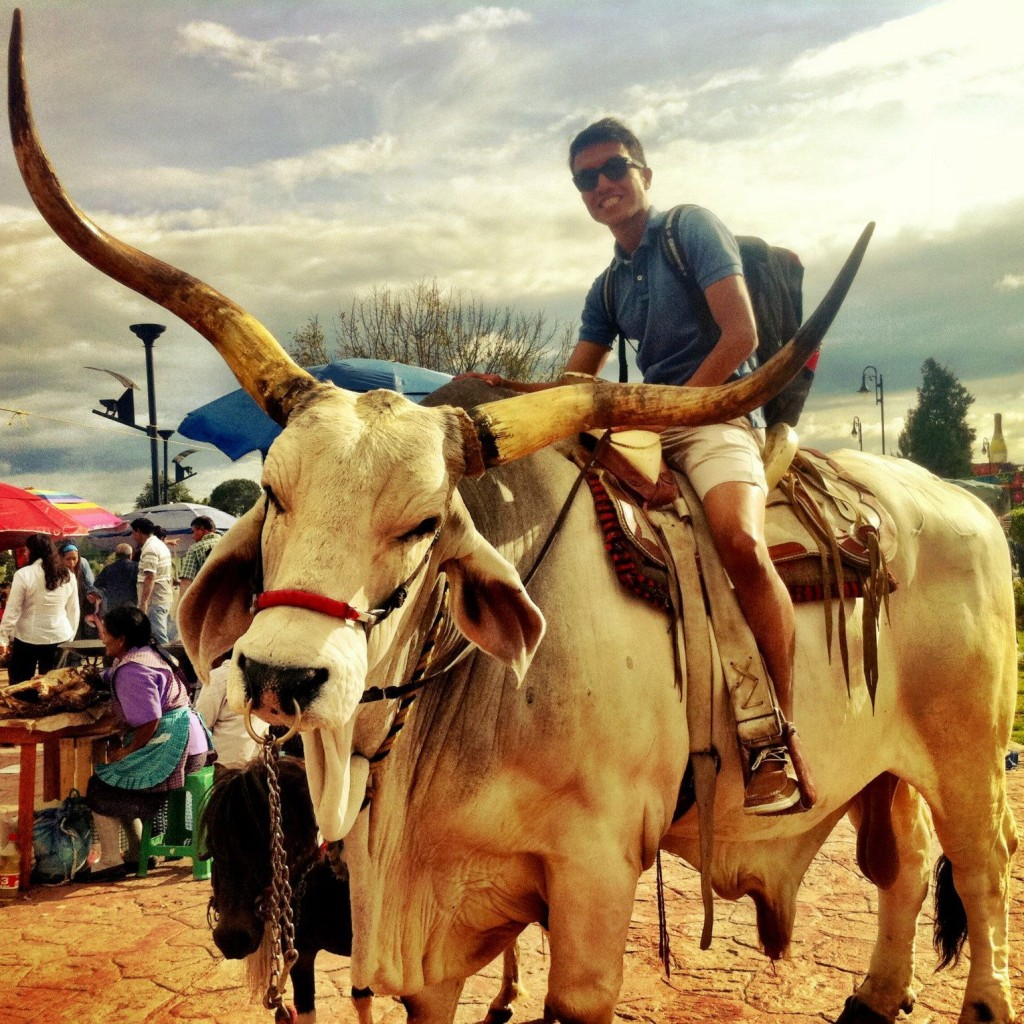 Rahman, mexico, bull, rides, travel