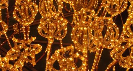 A field of lights