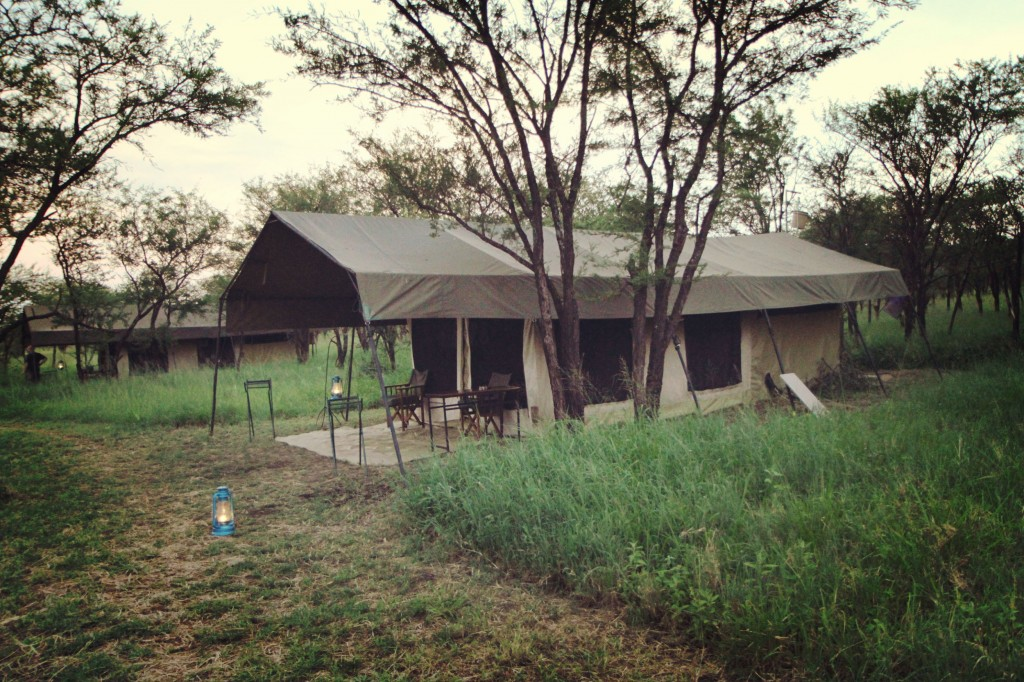 Our home in Serengeti