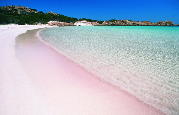 Pink Sand Beach Bahamas3