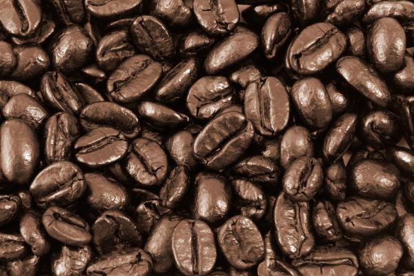 Ethiopia_coffee beans