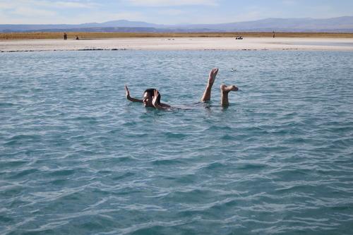 Laguna Cejar, Cejar Lagoon, San Pedro de Atacama