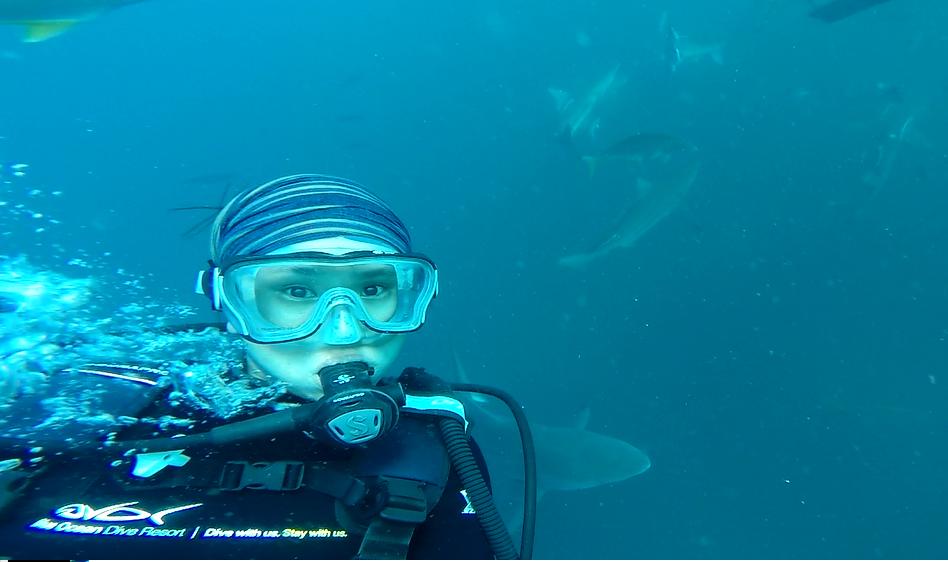 Huey Ying Dive 7