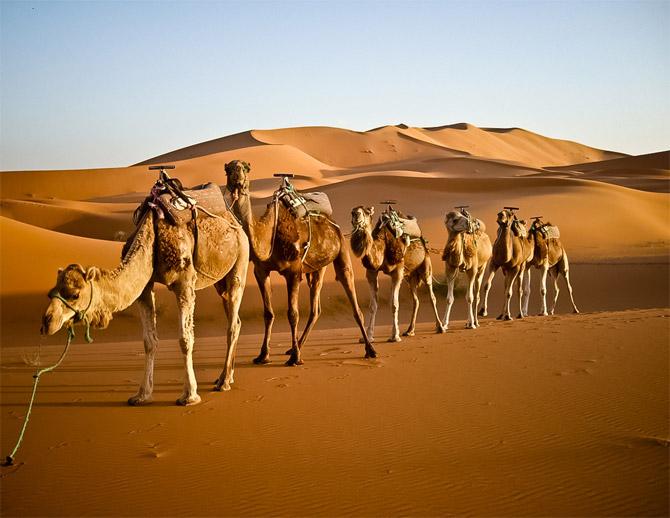 morocco_desert_3